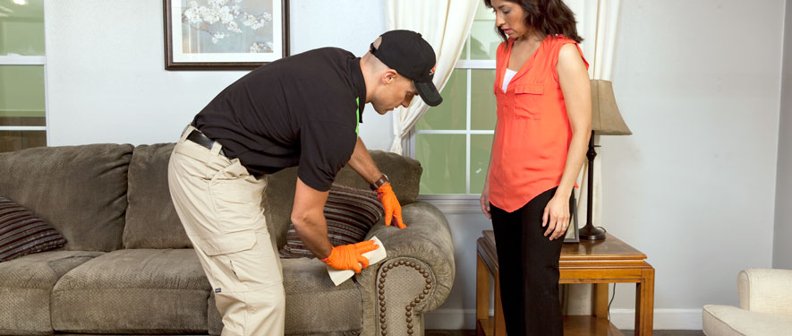 Kennewick, WA carpet upholstery cleaning